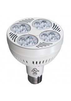 LED PAR30 Spot Light 35W 8000K