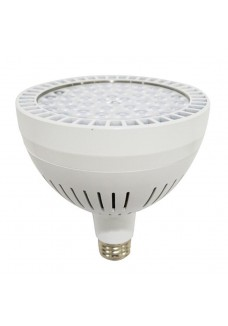 LED PAR38 Spot Light 60W 8000K